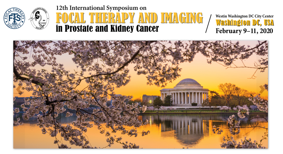 12th International Symposium on Focal Therapy and Imaging in Prostate and Kidney Cancer